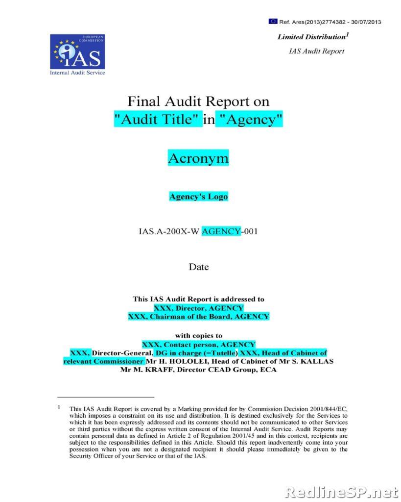 Audit Report 01