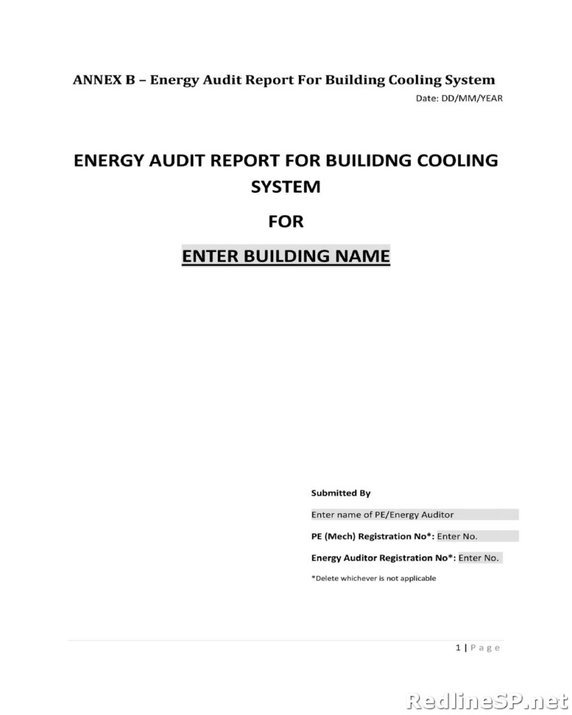 Audit Report 06
