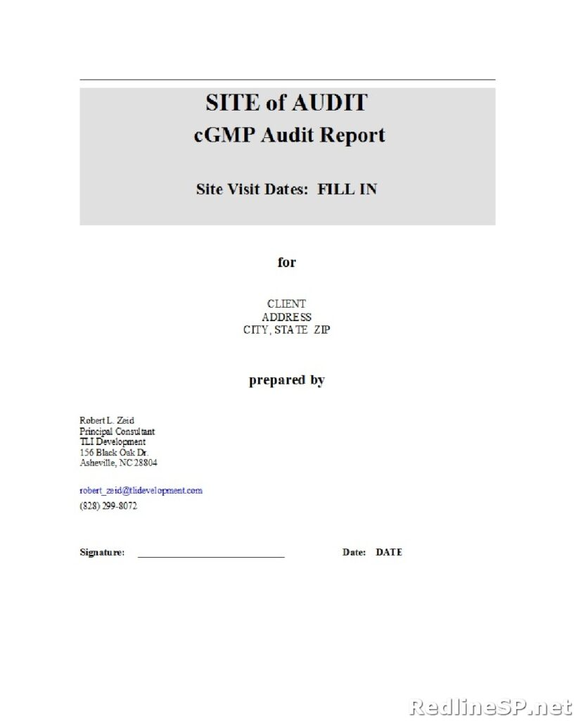 Audit Report Example 10