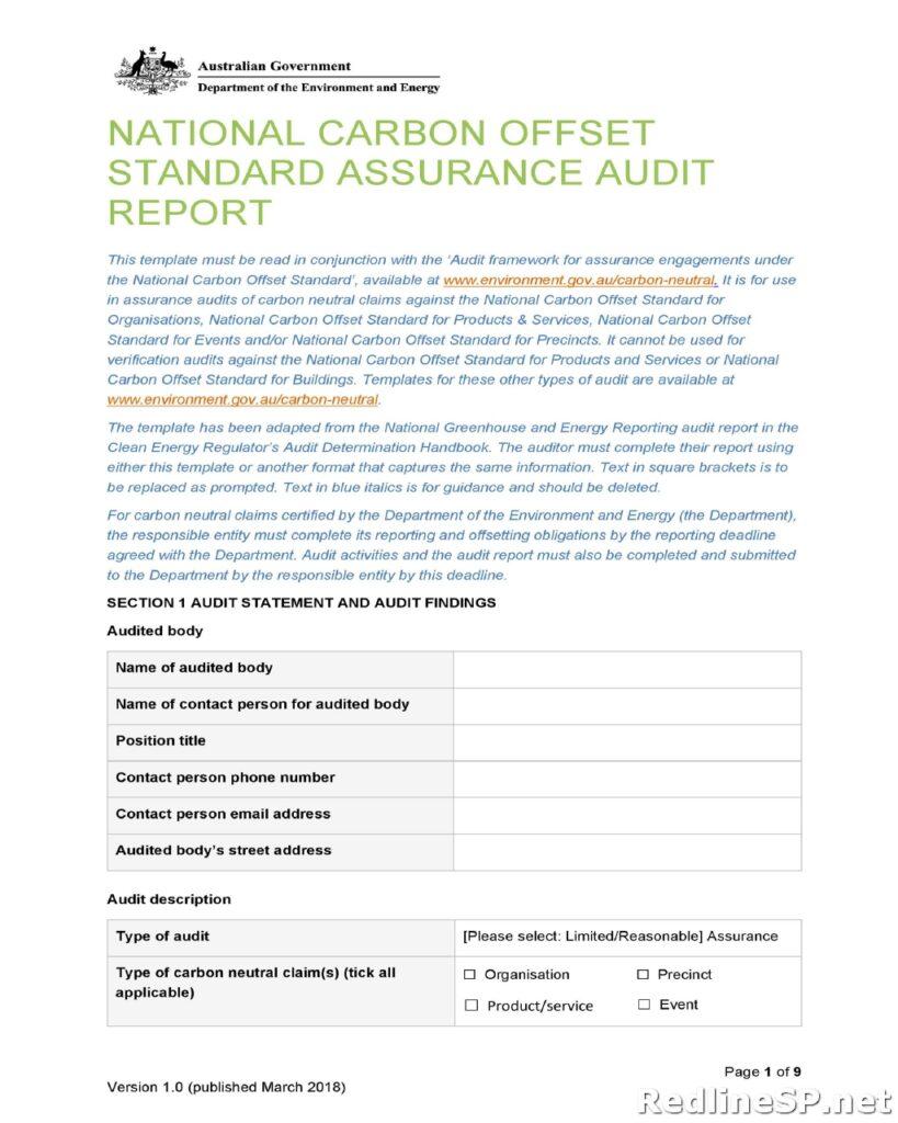 Audit Report Example 29