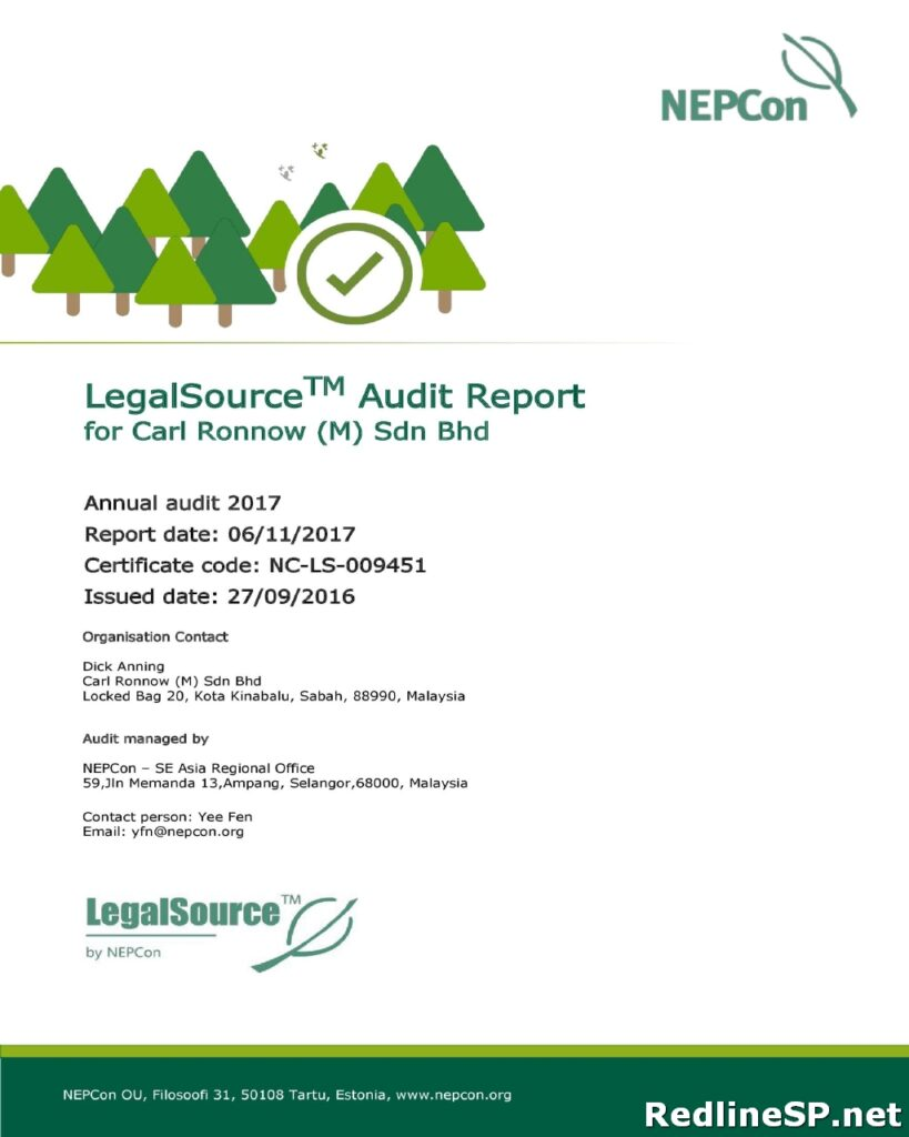 Audit Report Sample 39