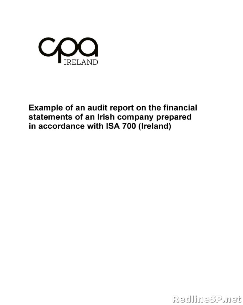 Audit Report Sample 50