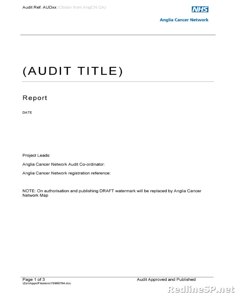 Audit Report Template 09