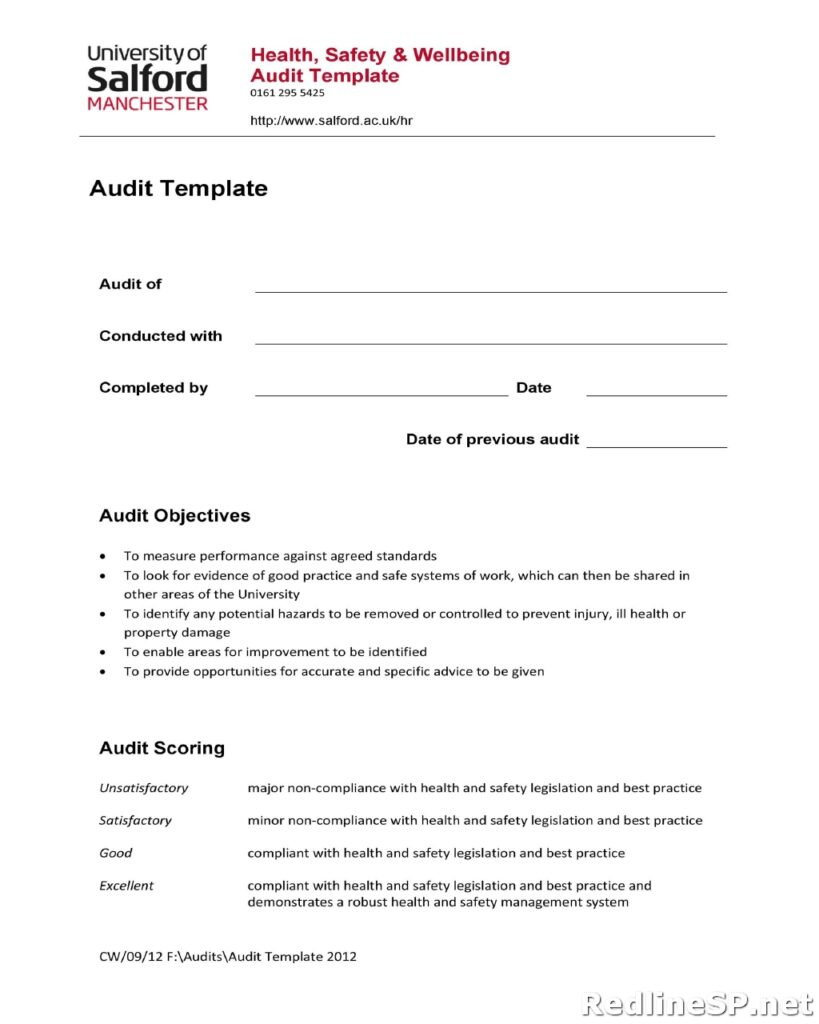 Audit Report Template 11