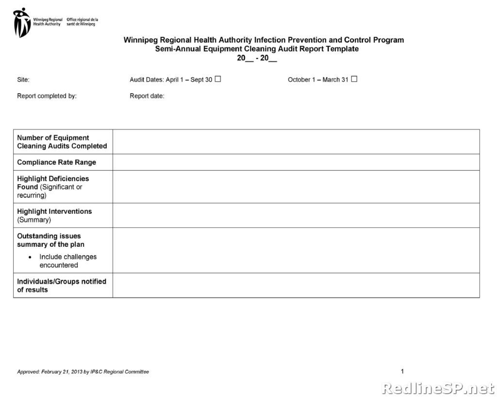 Audit Report Template 12