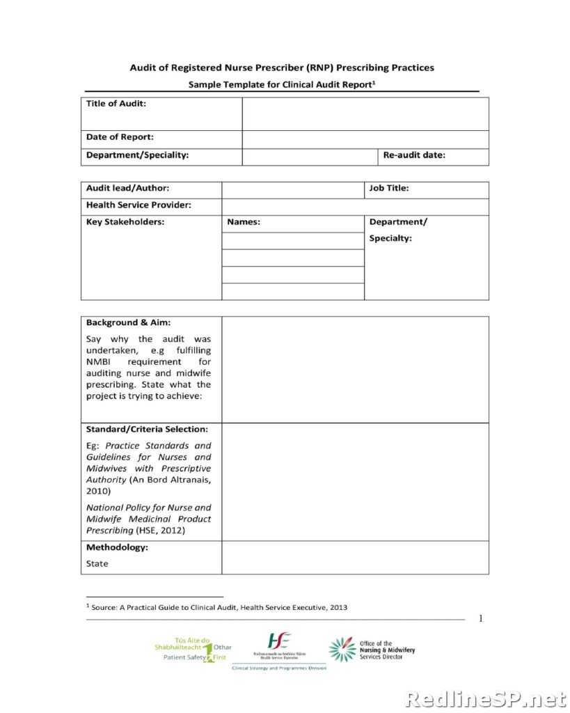 Audit Report Template 17
