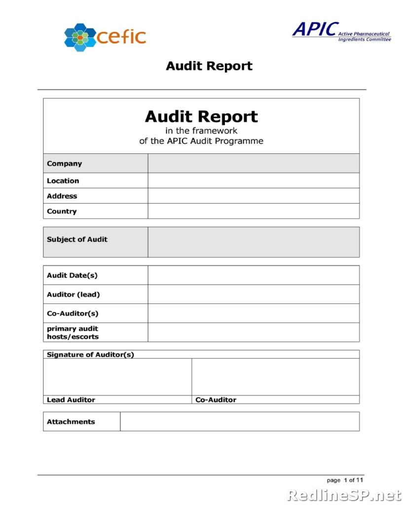 Audit Report Template 20