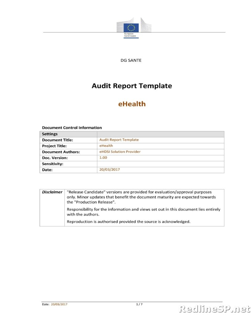 Audit Report Template 22