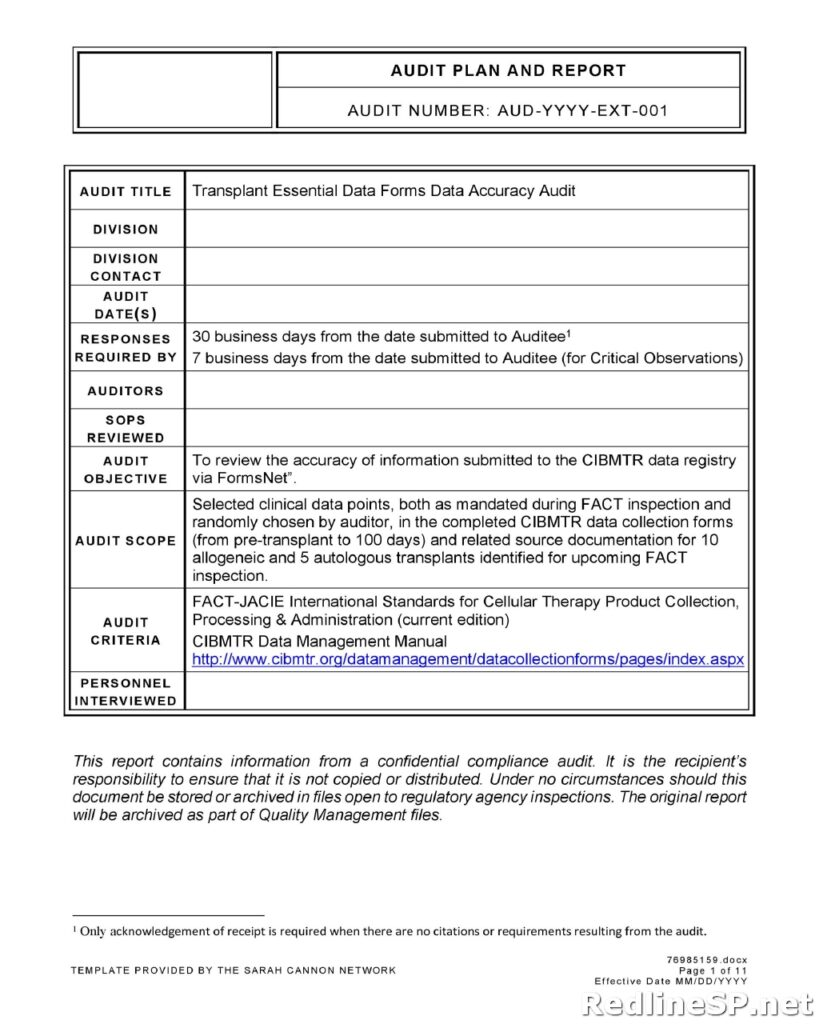 Audit Report Template 34