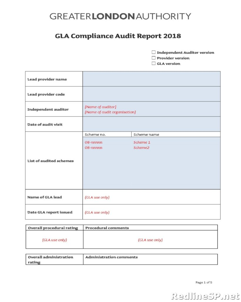 Audit Report Template 41