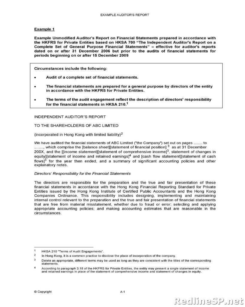 Audit Report Template 48