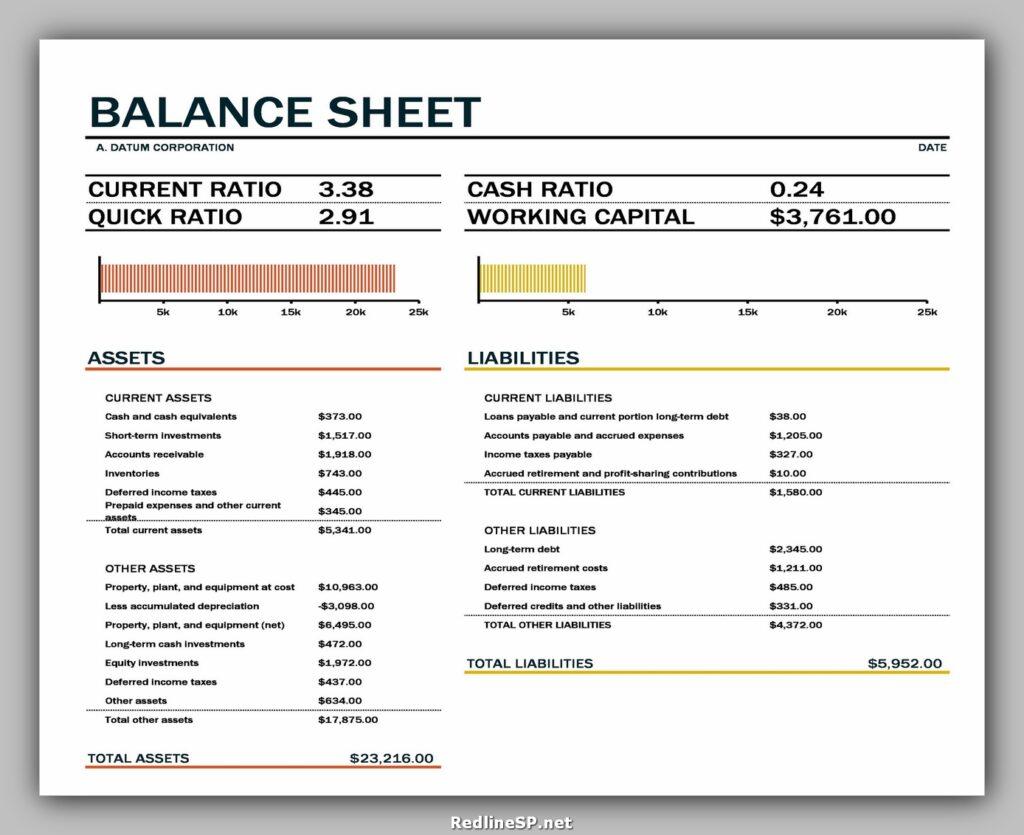 Balance Sheet Format 09