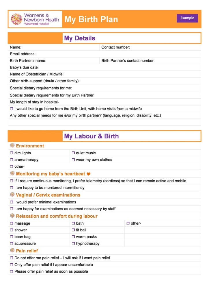 Birth Plan Template 13