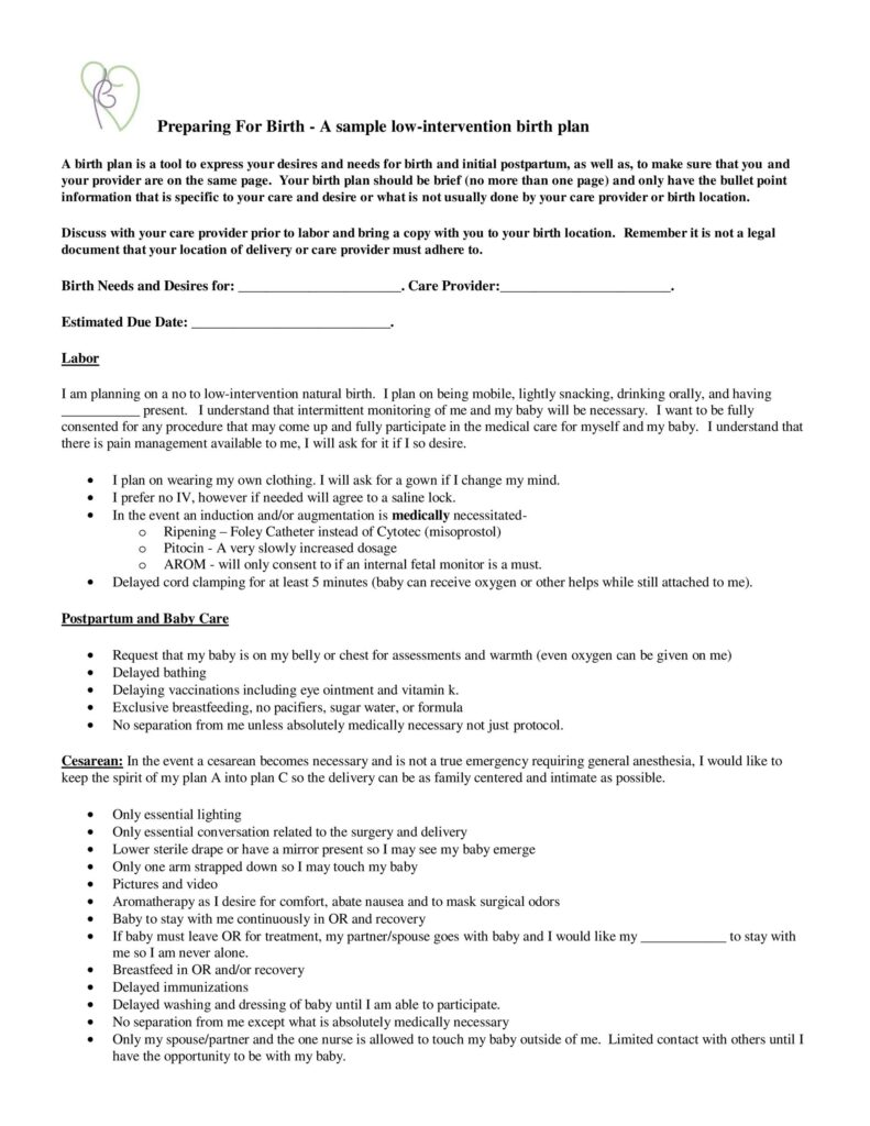 Birth Plan Template 15