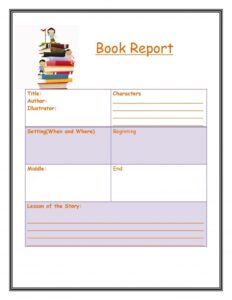 Book Report Example 11