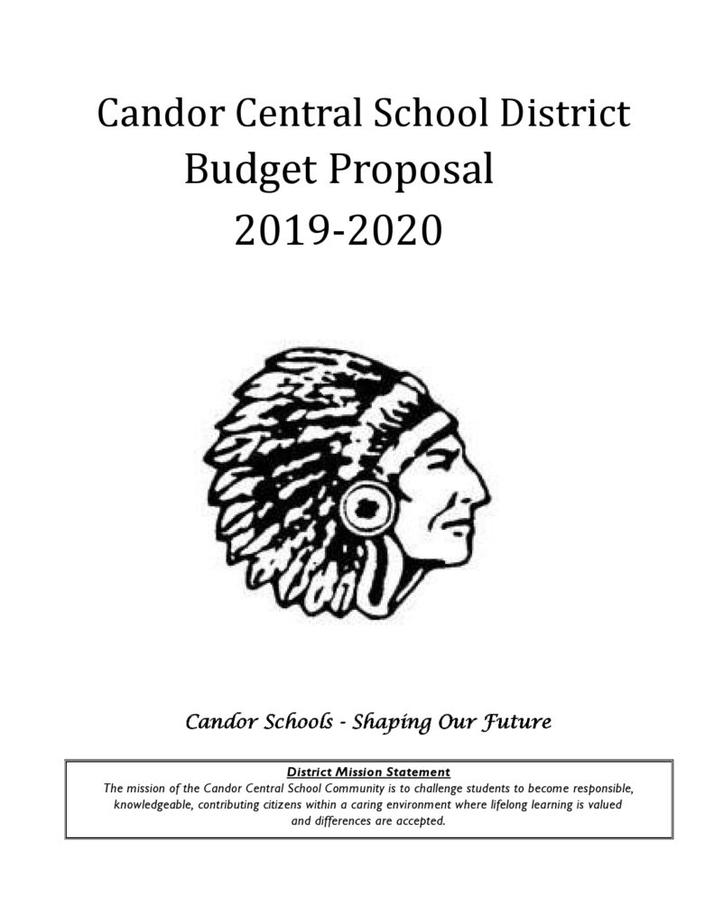 Budget Proposal Sample 30