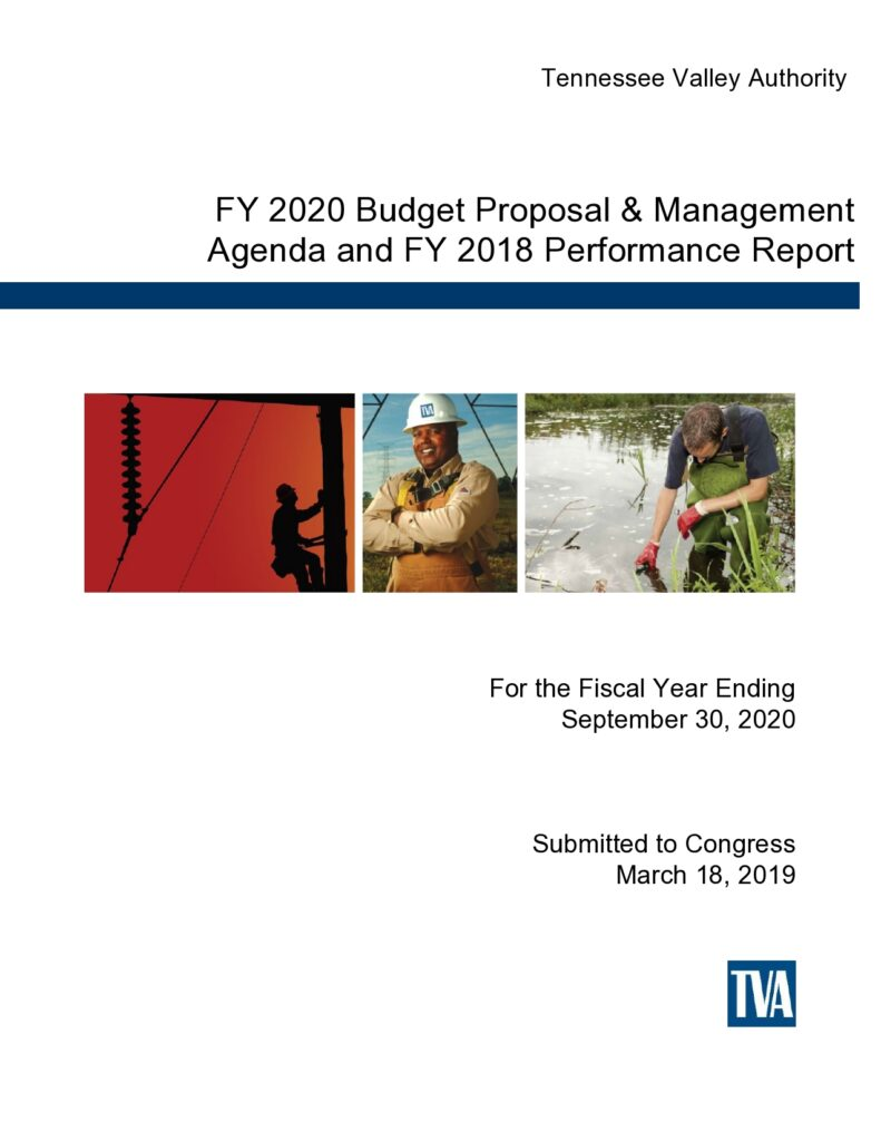 Budget Proposal Sample 46