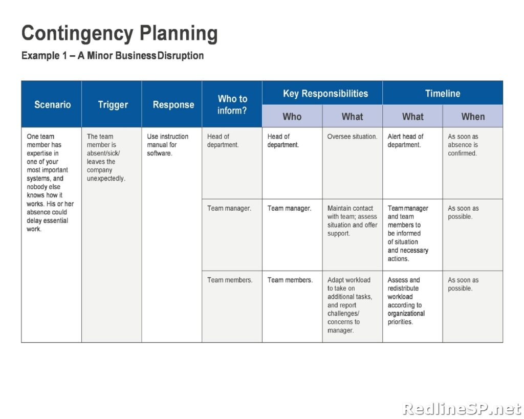 Contingency Plan Sample 12