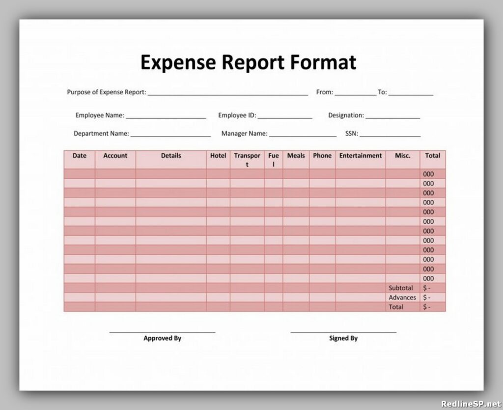 Expense Report Format 29