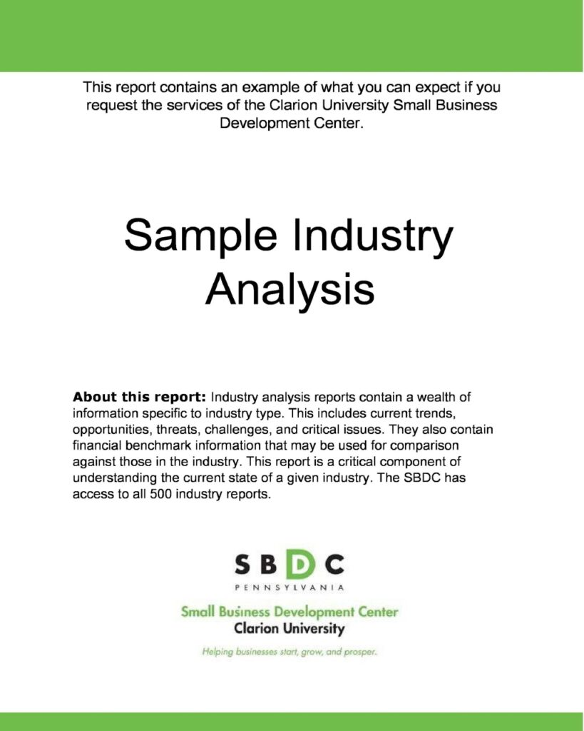 Industry Analysis 31