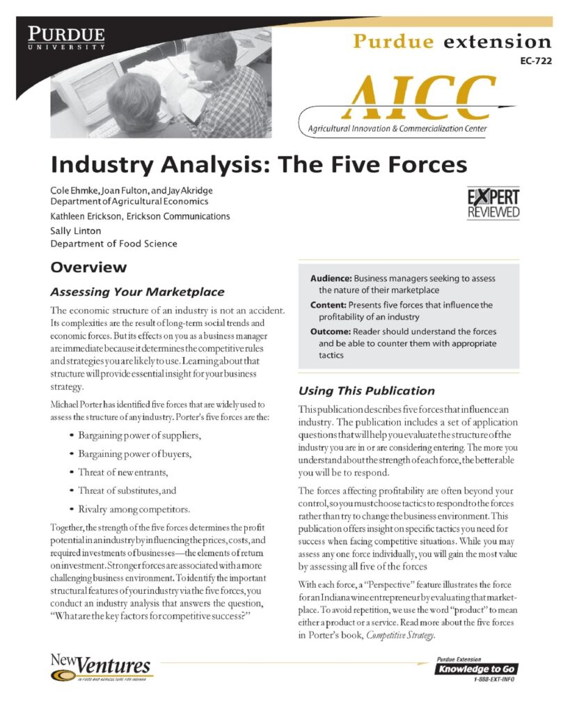 Industry Analysis Example 15