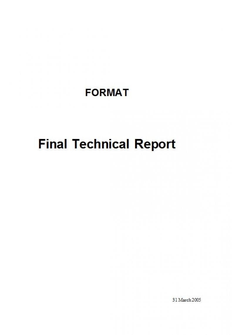 Technical Report Sample 39