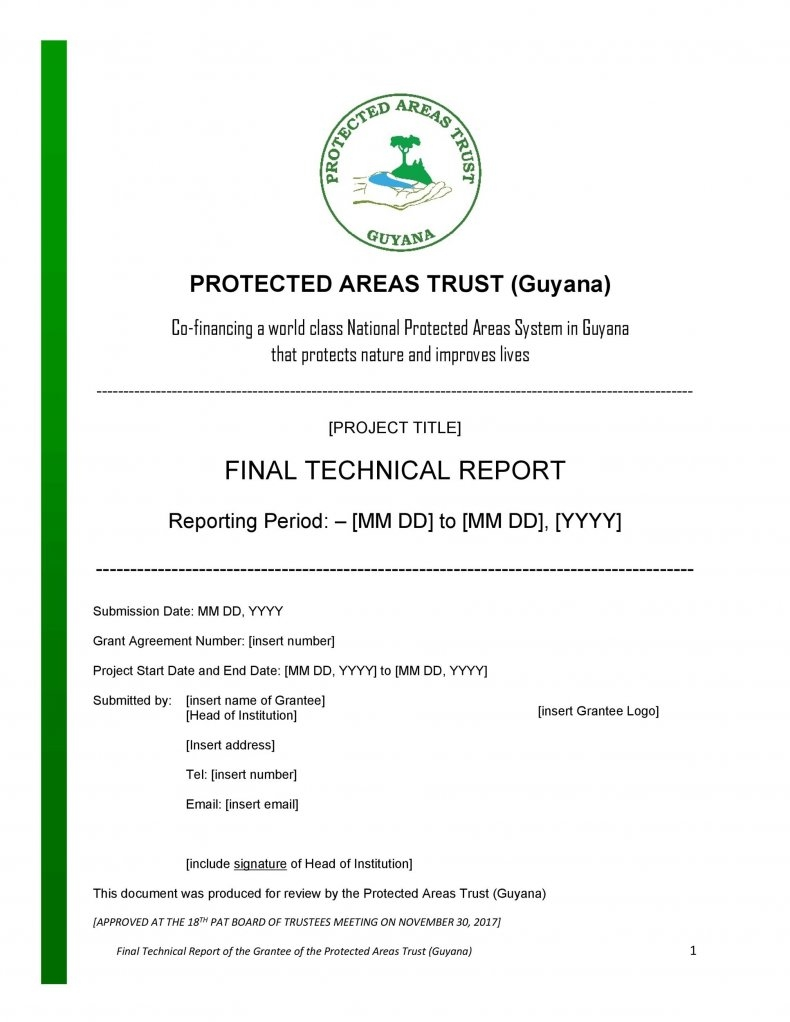 Technical Report Template 13