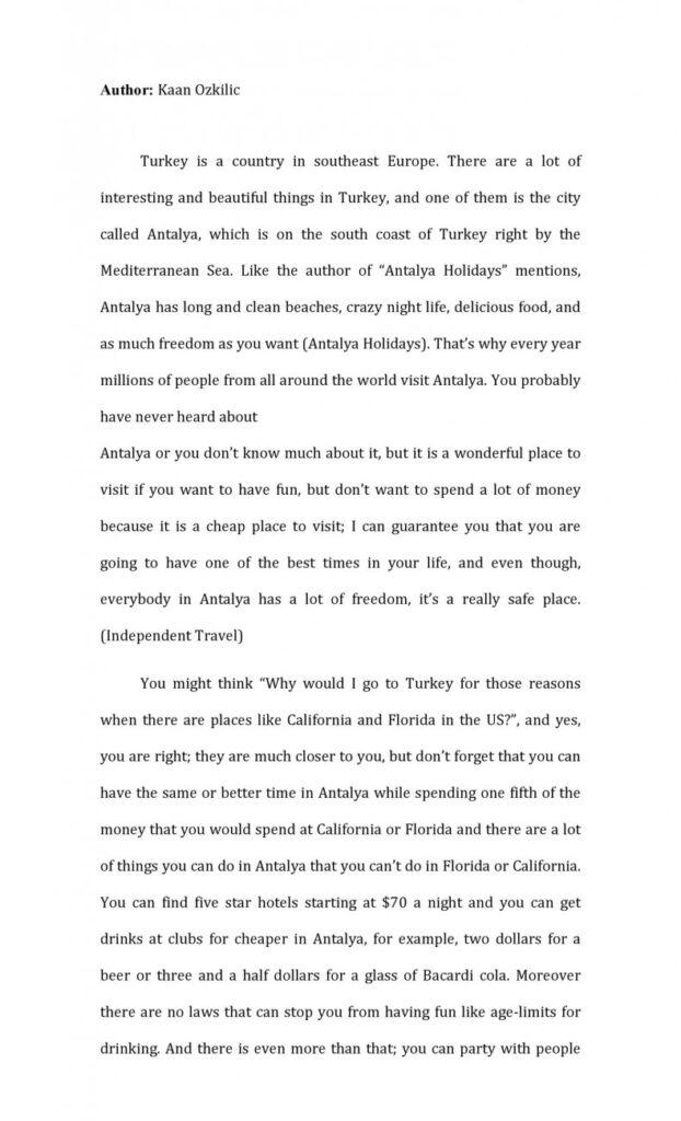 persuasive essay examples 04