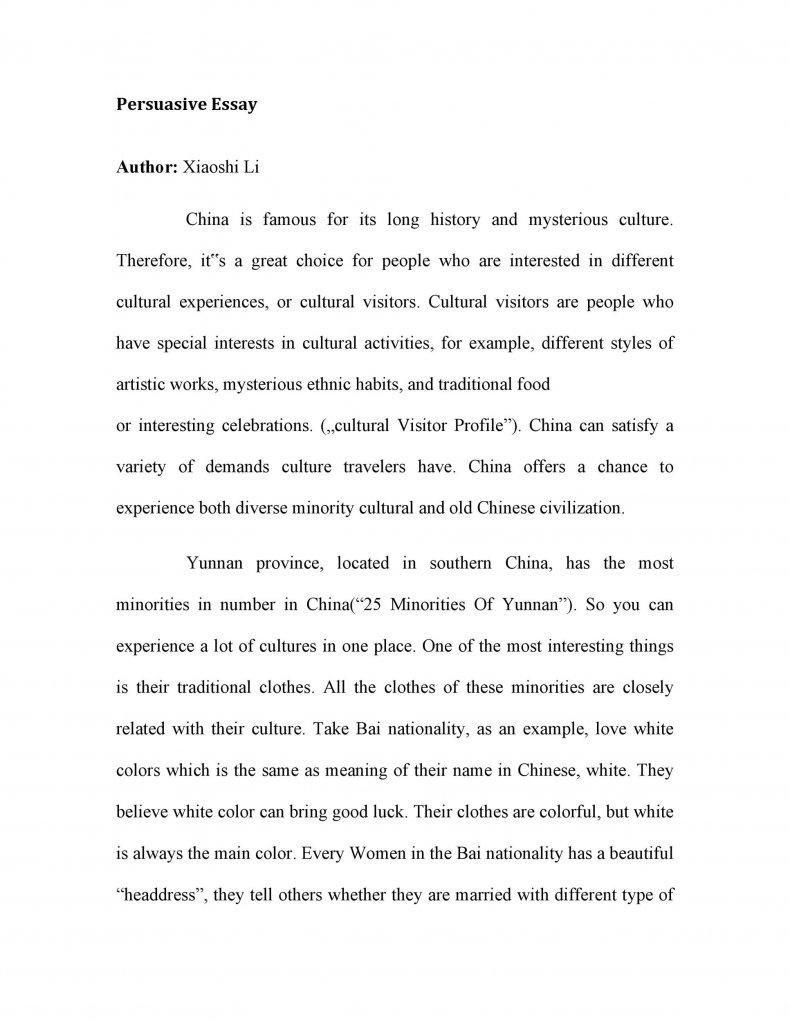 persuasive essay examples 05
