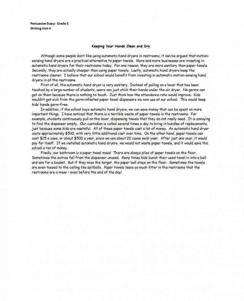 persuasive essay examples 07