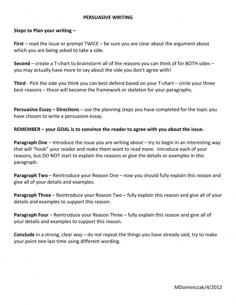 persuasive essay examples 11