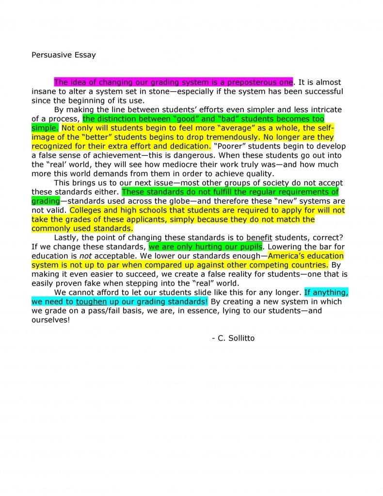persuasive essay examples 20