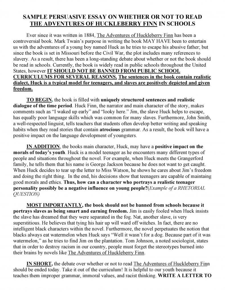 persuasive essay examples 21