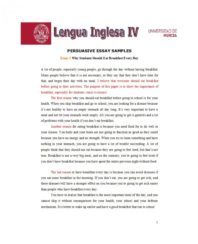persuasive essay examples 23