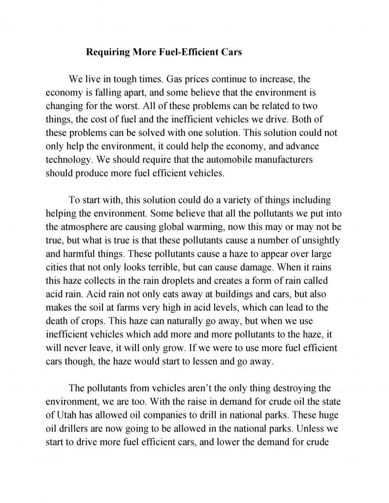 persuasive essay examples 29