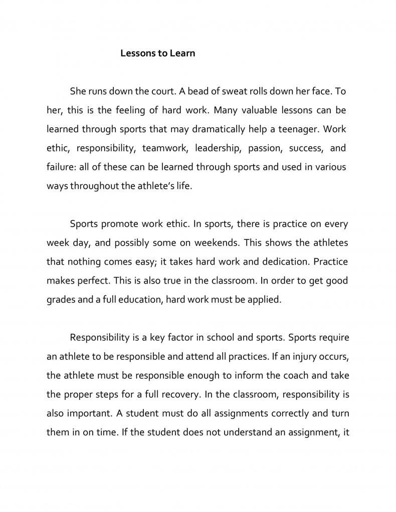 persuasive essay examples 38