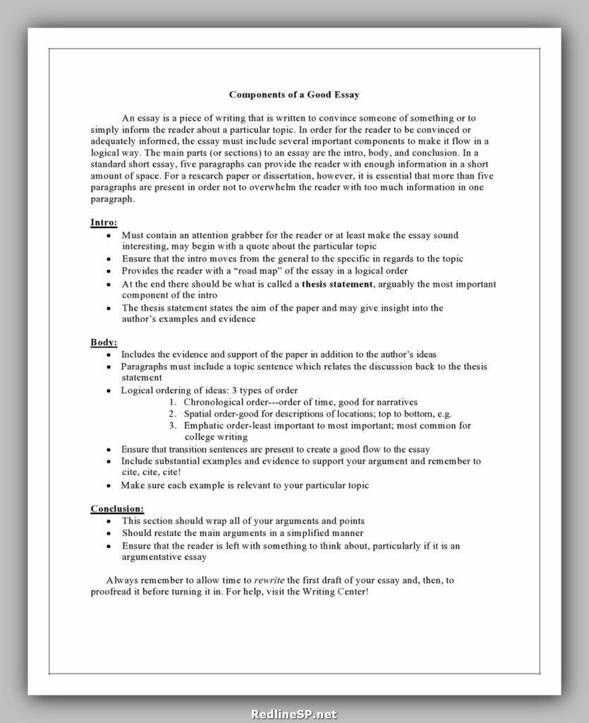 College Essay Examples 15