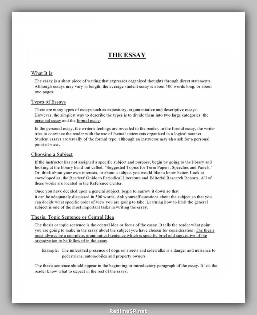 College Essay Examples 16