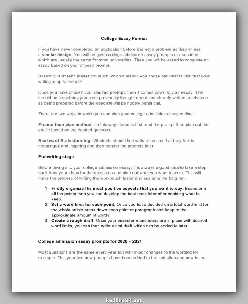 College Essay Examples 18