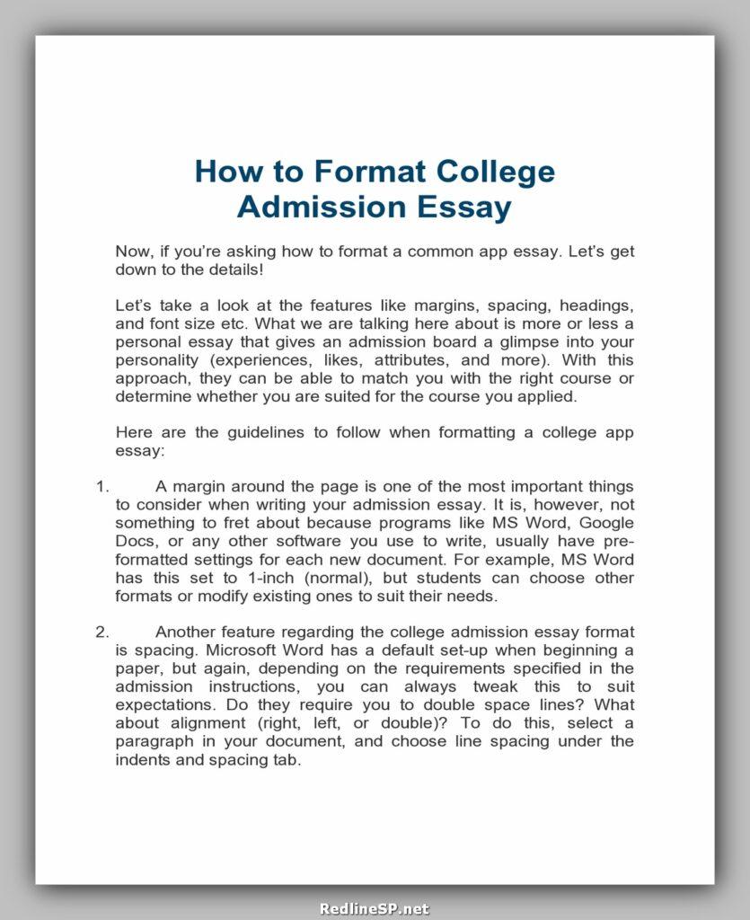 College Essay Examples 24
