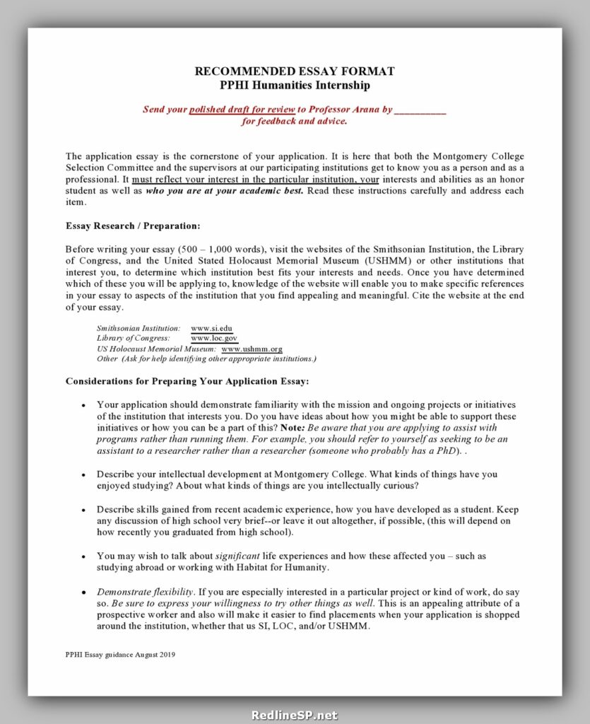 College Essay Template 03