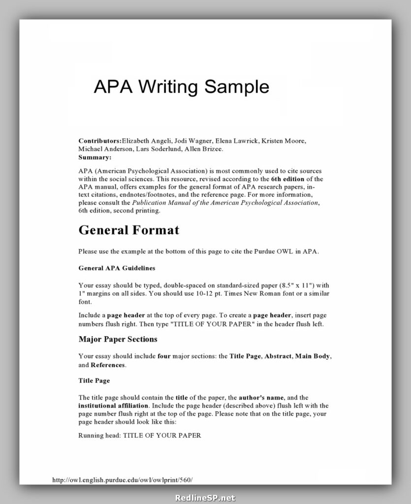 College Essay Template 05