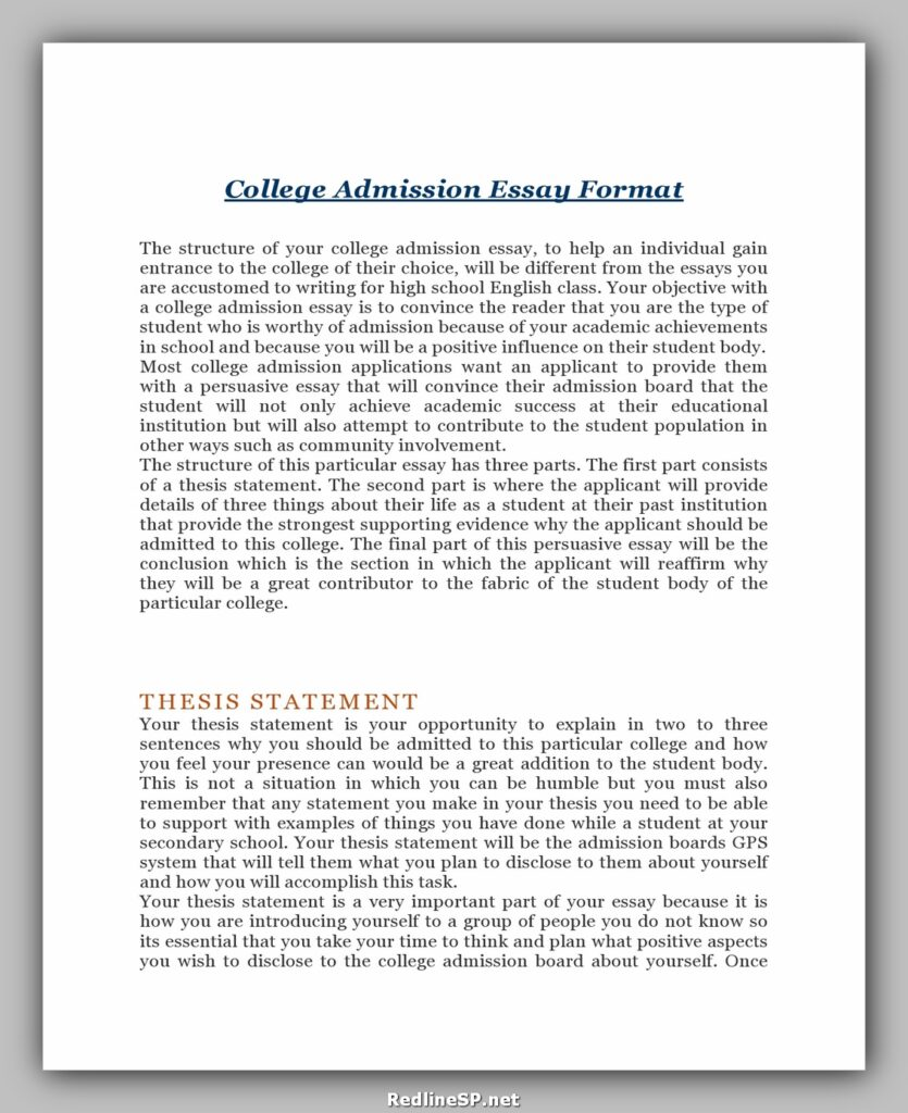 College Essay Template 06