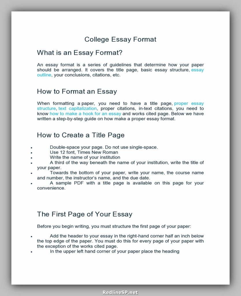 College Essay Template 07