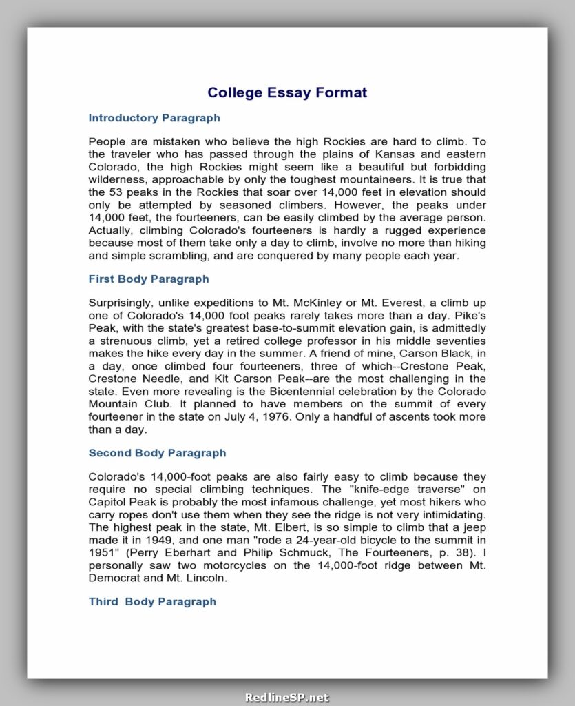 College Essay Template 08