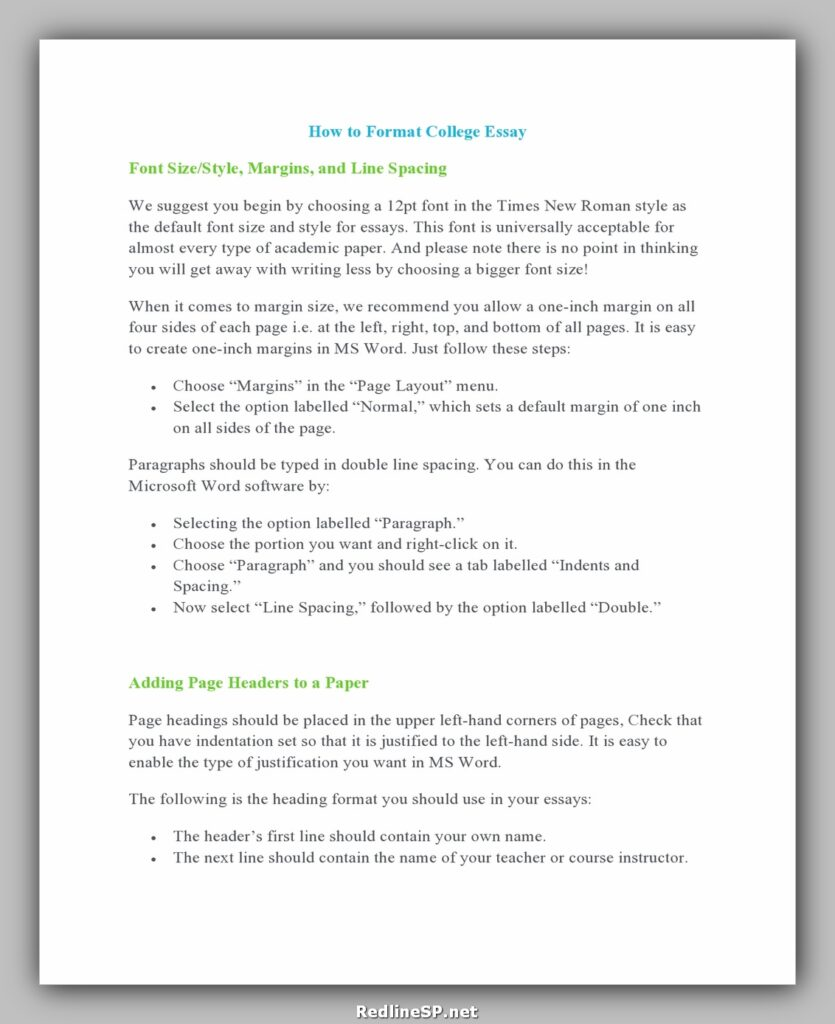 College Essay Template 09