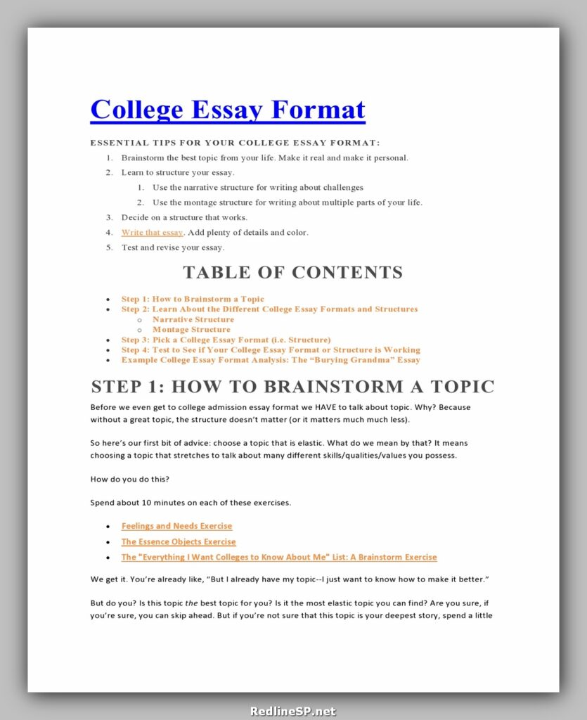 College Essay Template 10