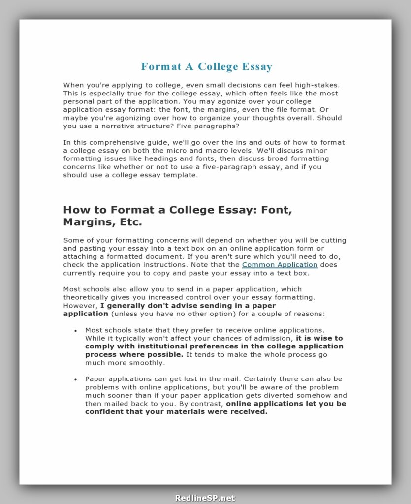 College Essay Template 11
