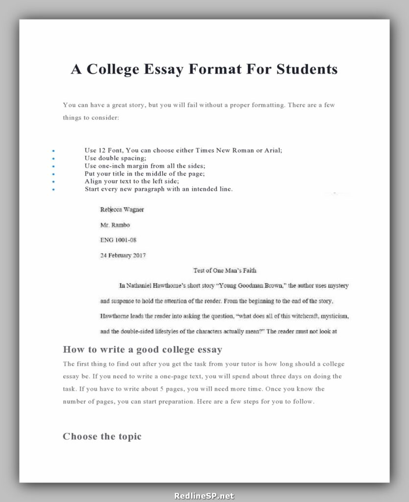 College Essay Template 12
