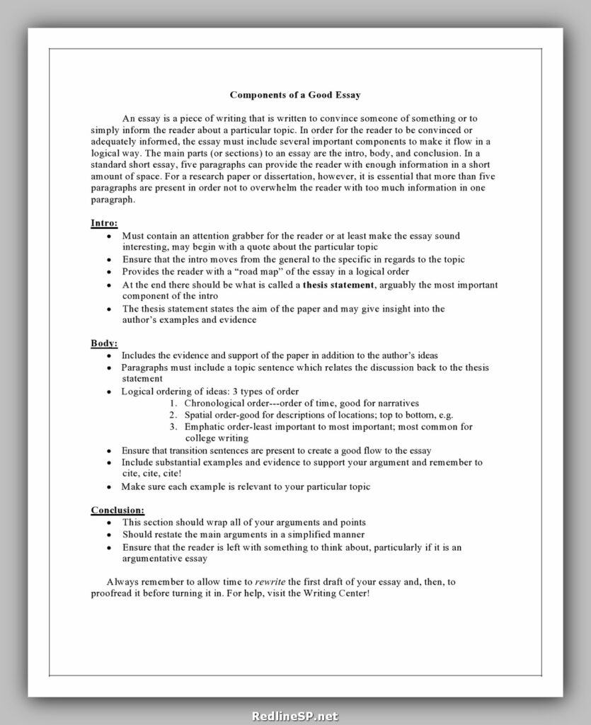 College Essay Template 15